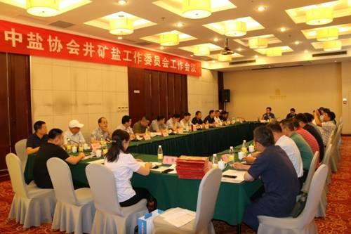 中盐协会井矿盐工作委员会工作会议在泰安召开