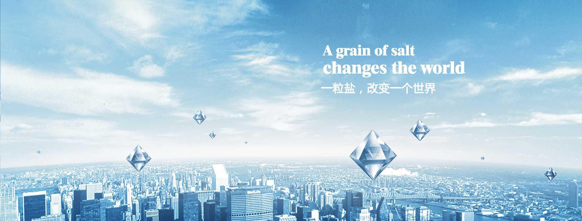 一粒盐,改变一个世界